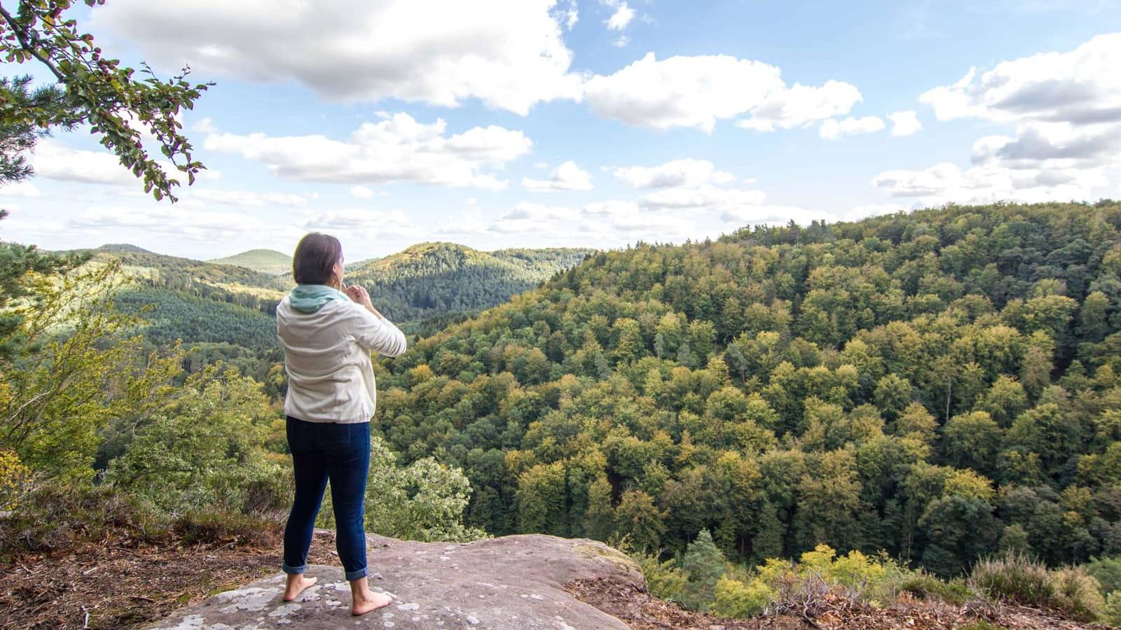 Massif des Vosges - Prendre un bain de forêt