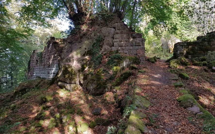 Ruines du Château du Grand Ringelstein ou Ringelsbourg