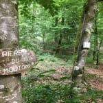 Circuit de randonnée pédestre - Des pierres et des étangs