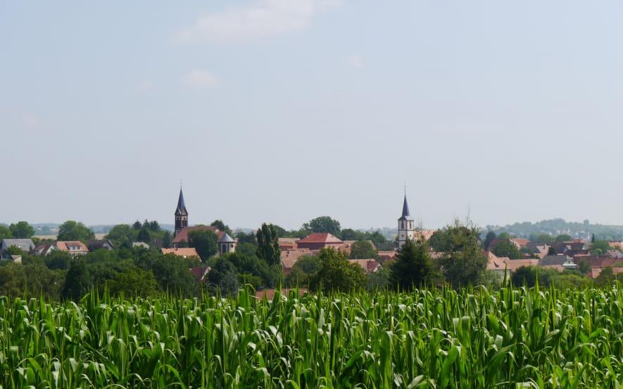 Circuit découverte de Kutzenhausen