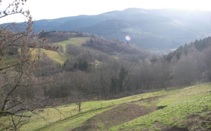 Gîte rural - Im Berg
