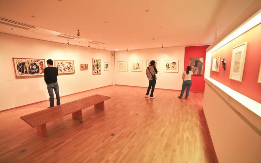 Musee d'art moderne - donation maurice jardot