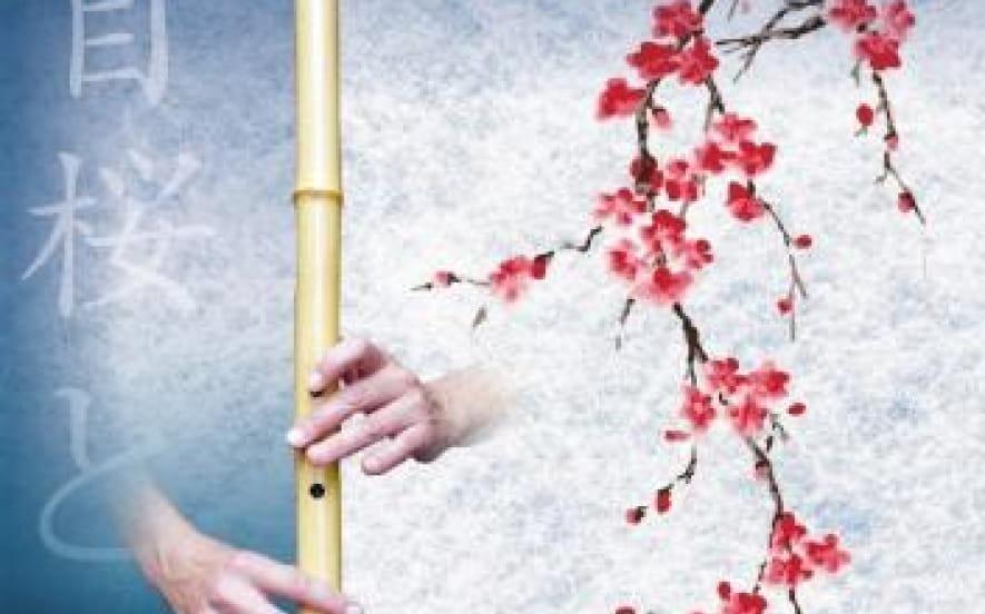Concert sur la Colline - Shizento