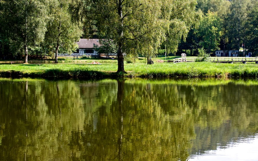 Etang de pêche du Fleckenstein