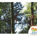 ACCRO'PLANCHE - Parcours dans les arbres