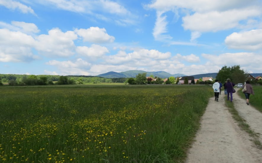 Piste et Trésor : S'envoler à Sentheim