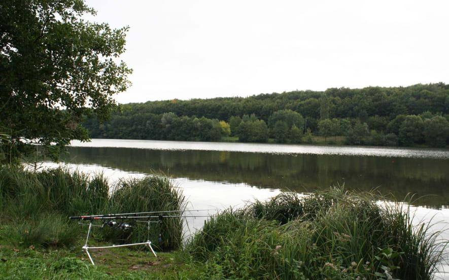 Pêche au plan d'eau