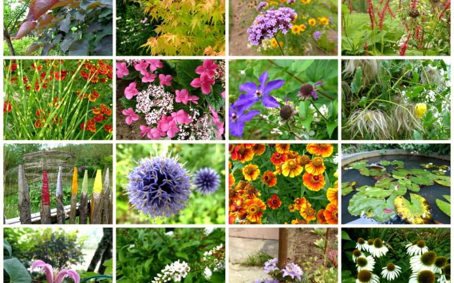 Fete des plantes - jardin de la ferriere