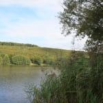 Circuit de promenade : Schwarzbach - Plan d'eau de Reichshoffen