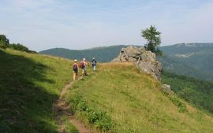 Rando Vosges