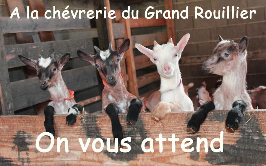 LA CHÈVRERIE DU GRAND ROUILLIER