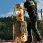ANNULE : 42ème édition de la Fête du bois