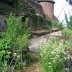 Fermé pour travaux - Jardin médiéval
