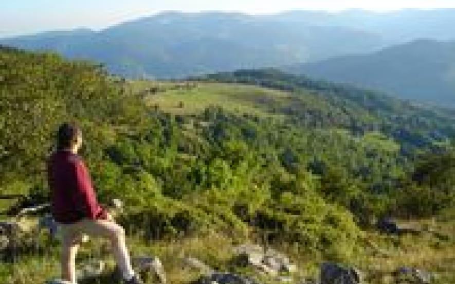 Randonnées et sorties nature avec Cimes et Sentiers