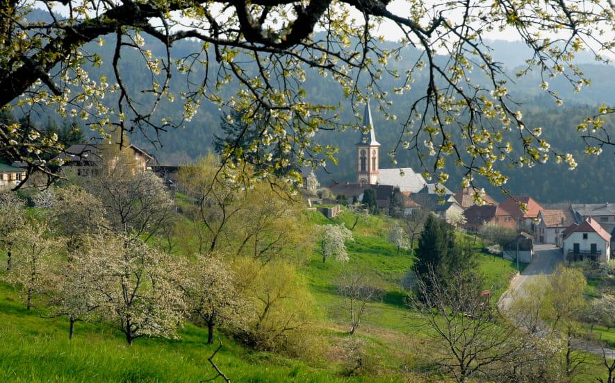 Balade Ludique à Thannenkirch
