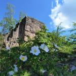Ruines des Châteaux du Nideck