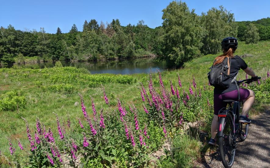 Location de VAE à l'Office de tourisme des 1000 étangs