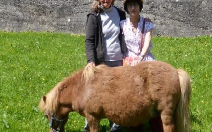 Au pré des poneys je vivrai heureux