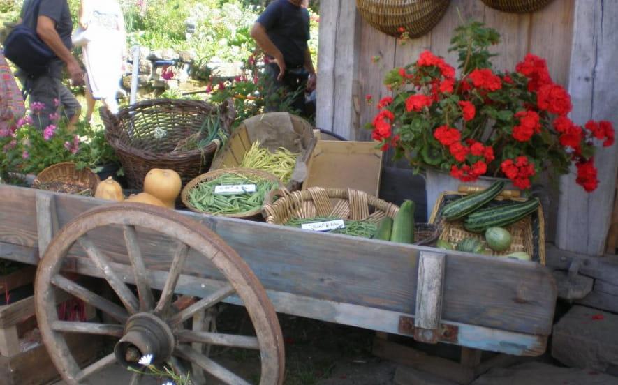 Les Jardins en Terrasses et Accrobranche