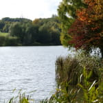 Le Barrage de Michelbach