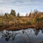 Entre étangs et prairies