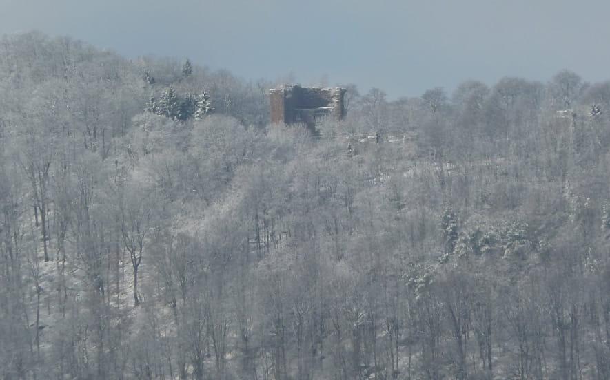 Vue sur le château de la Wasenbourg