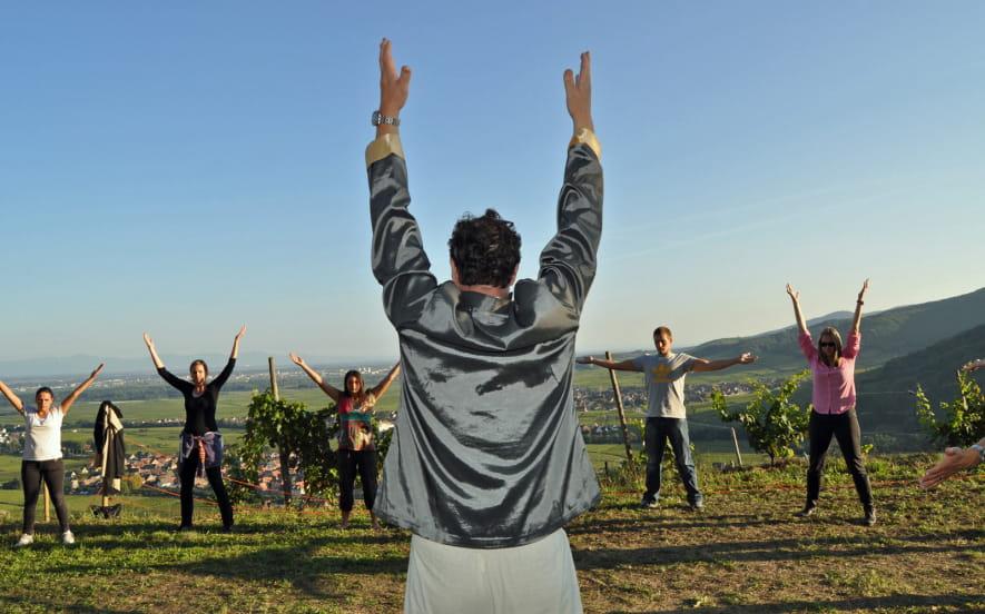 La Parenthèse Vigneronne ''Qi Gong dans les vignes''