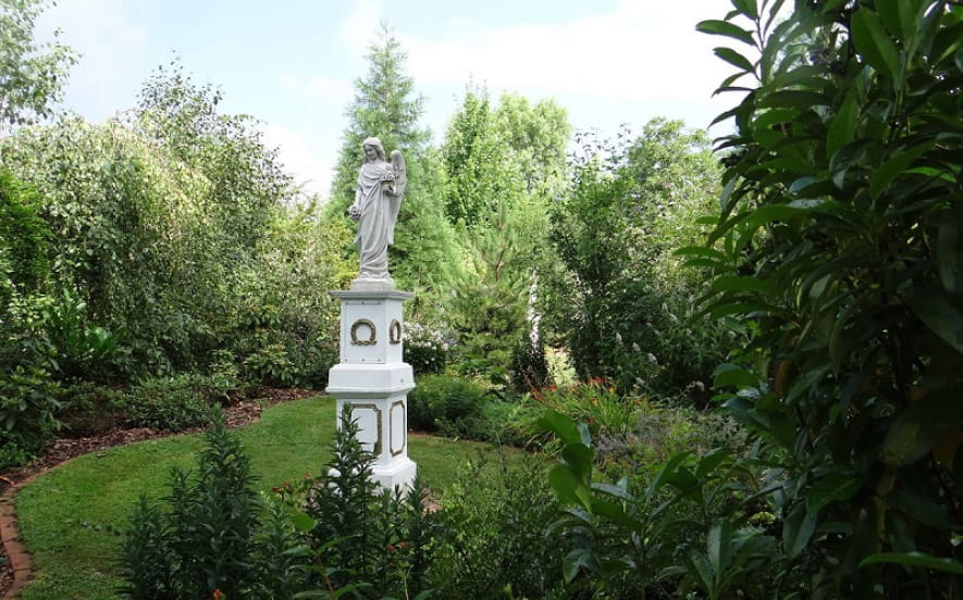 Au jardin d'Hirsute