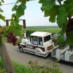 SARL SAAT : Petit train touristique