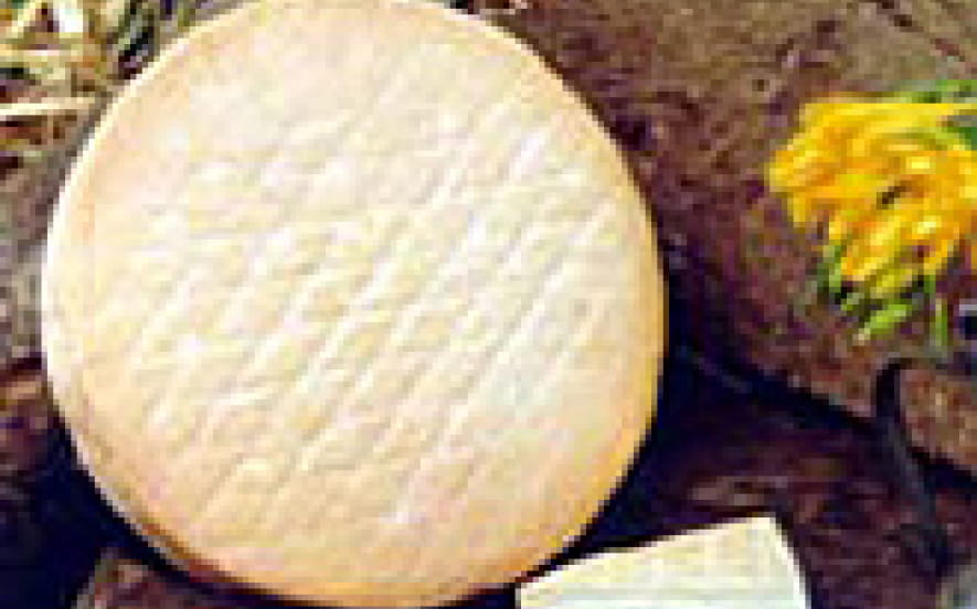 Fromagerie : Ferme Schubnel (GAEC)