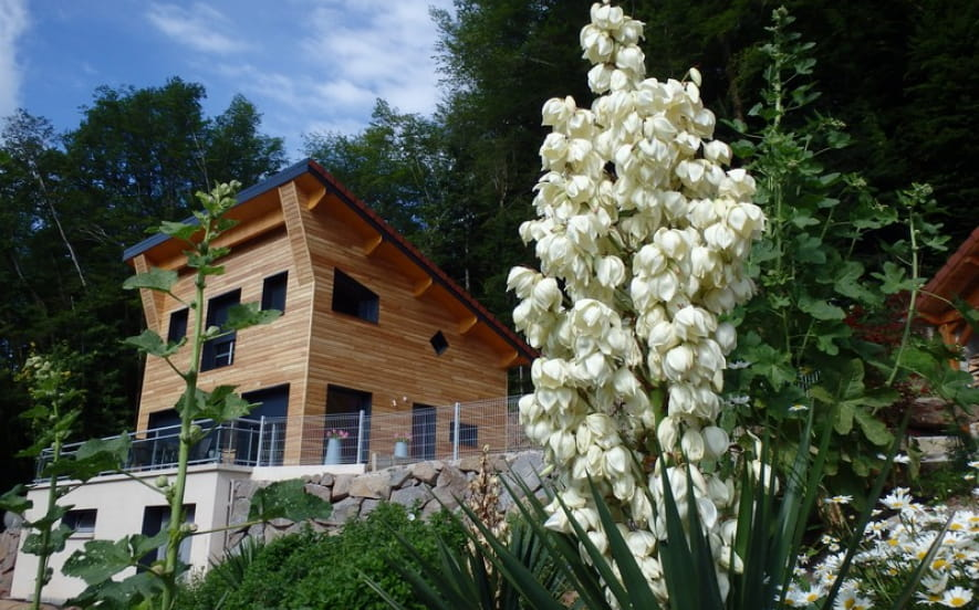 Villa cora venez****