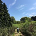 Circuit de randonnée pédestre - La Croix des Danses